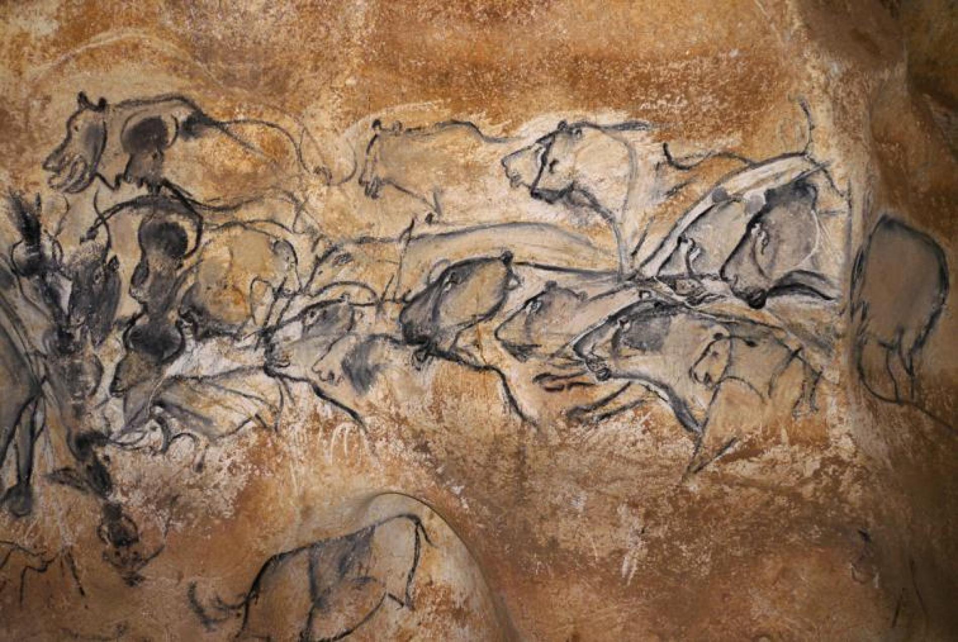 Grotte Chauvet, Aven d'Orgnac, Gorges de l'Ardeche…