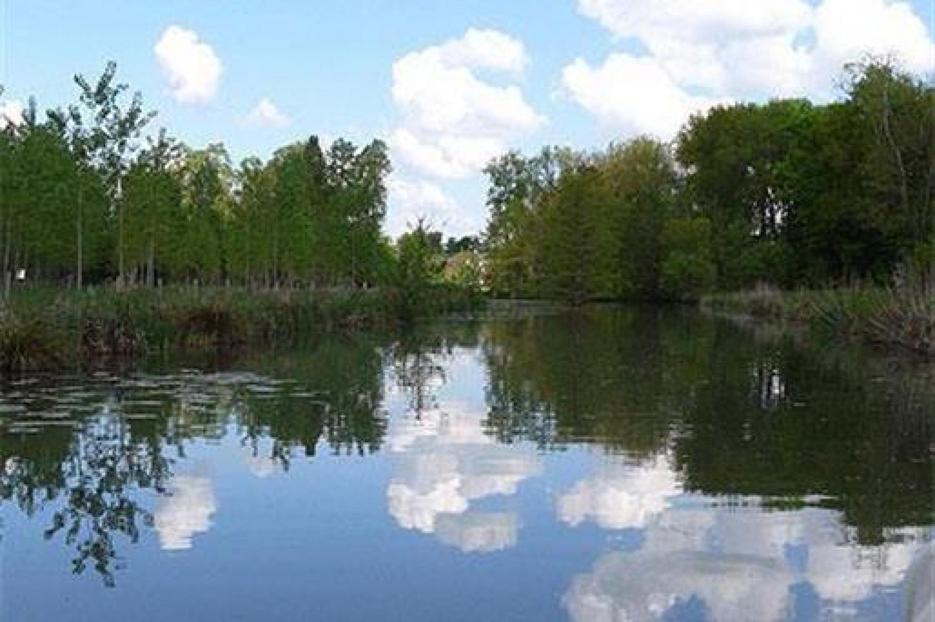 En barque sur le Loir