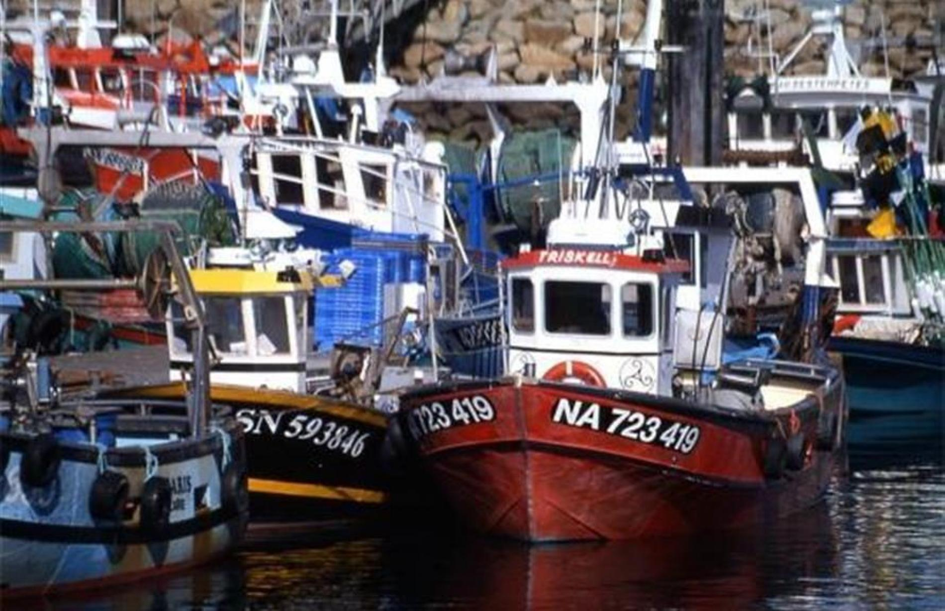 Le port de pêche de la Turballe