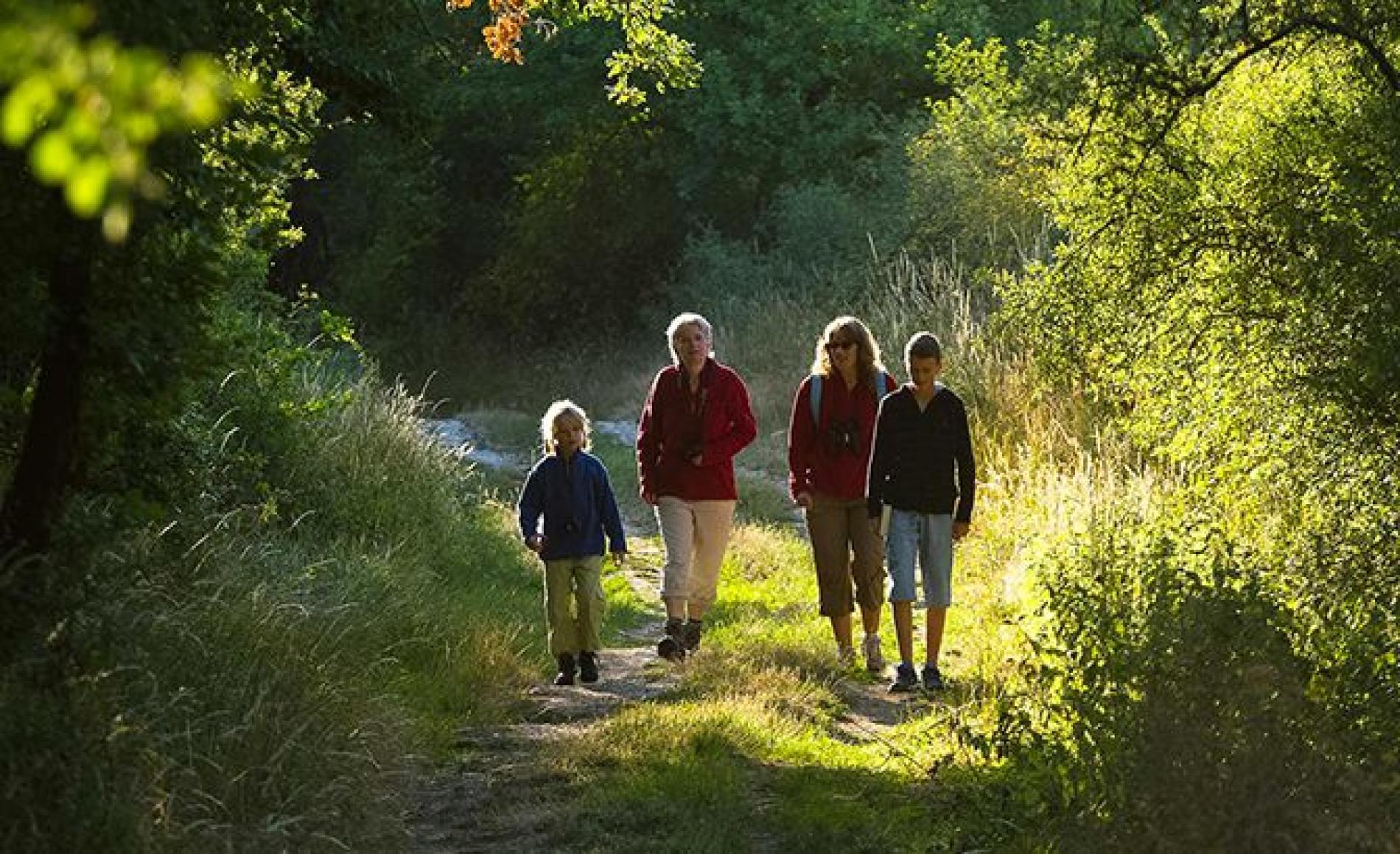 Le Parc de la Brenne, la Vallée de la Creuse