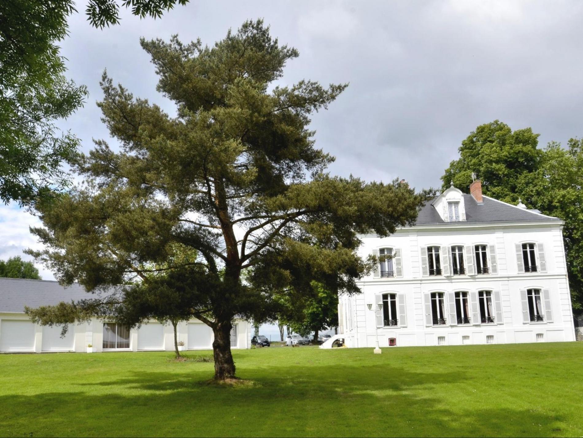 Hôtel Restaurant Terrasse Parc Nangis - Le Châtel
